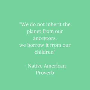 We do not inherit the planet